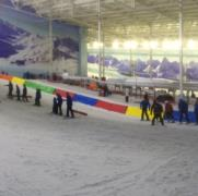 Chill Factore - Lane Dividers